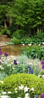 Chlesea-Garden-11